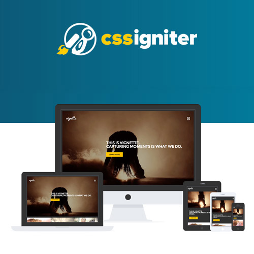 CSS Igniter Vignette WordPress Theme