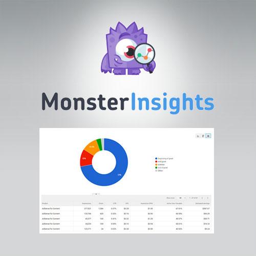 MonsterInsights Ads Addon