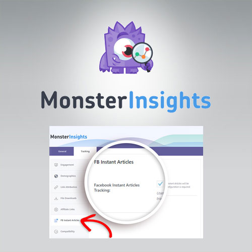 MonsterInsights Facebook Instant Articles Addon