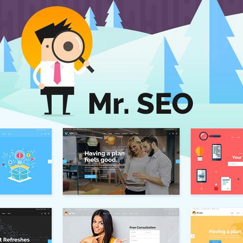 Mr SEO SEO Marketing Agency and Social Media Theme