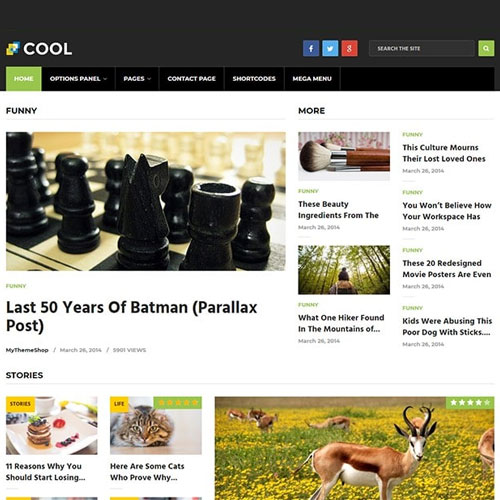 MyThemeShop Cool WordPress Theme