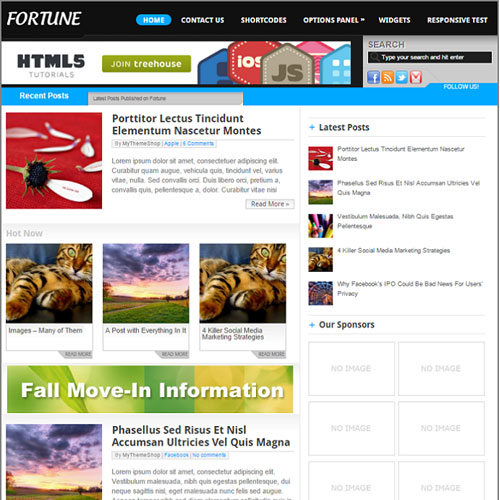 MyThemeShop Fortune WordPress Theme