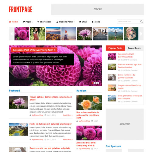 MyThemeShop Frontpage WordPress Theme