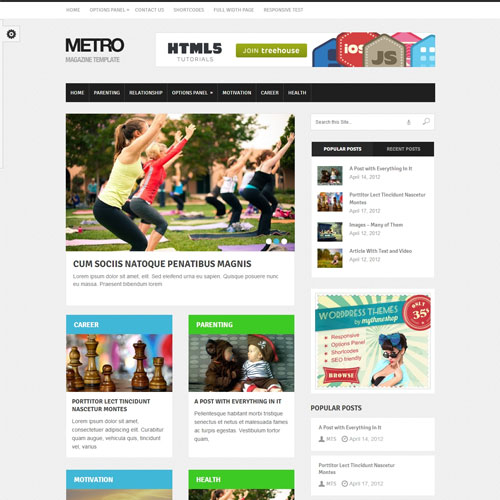 MyThemeShop Metro WordPress Theme