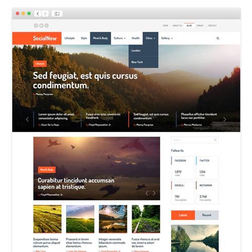 MyThemeShop Social Now WordPress Theme