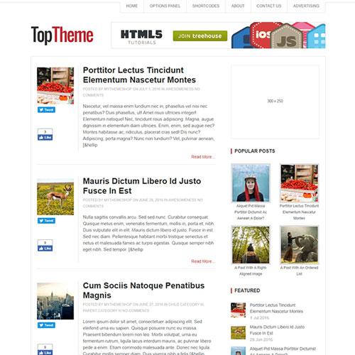 MyThemeShop Top WordPress Theme