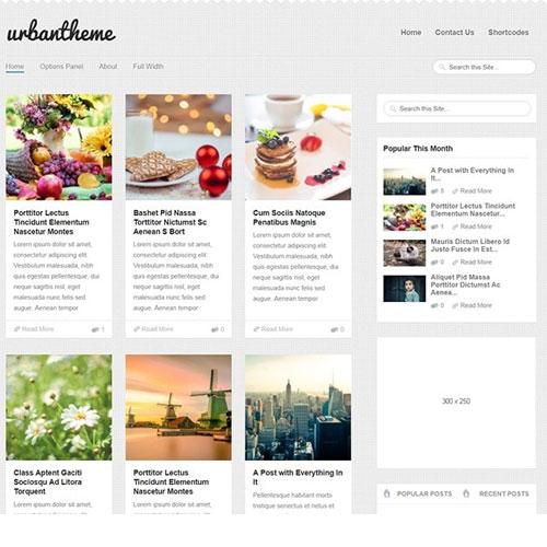 MyThemeShop Urban WordPress Theme