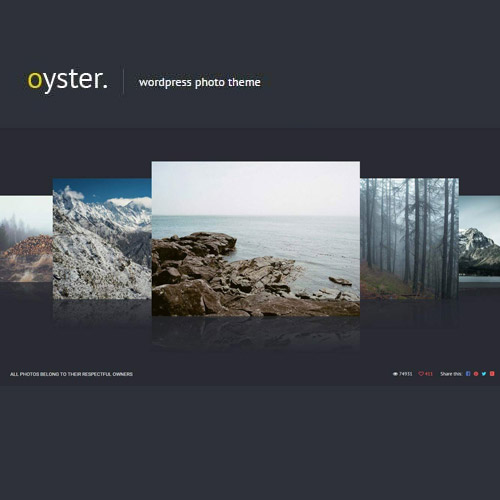 Oyster Creative Photo WordPress Theme