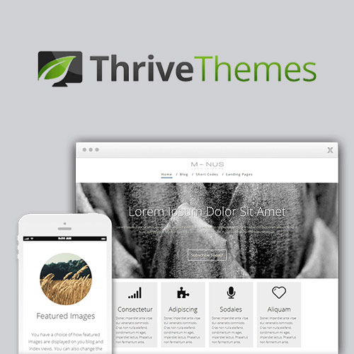 Thrive Themes Minus WordPress Theme